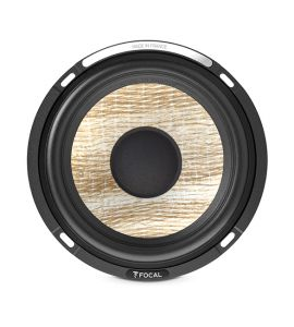 Focal PS 165 F3E woofer (165 mm). HPVE1149